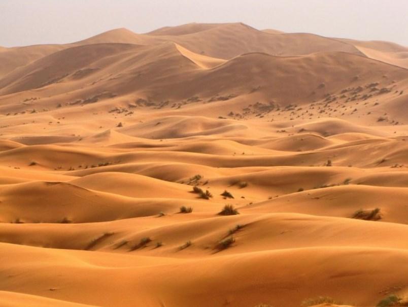 В Сахаре очень жарко и сухо